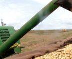 Brasil aumentou a produção de grãos na safra 2018/2019